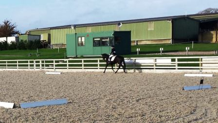 Lords Dressage